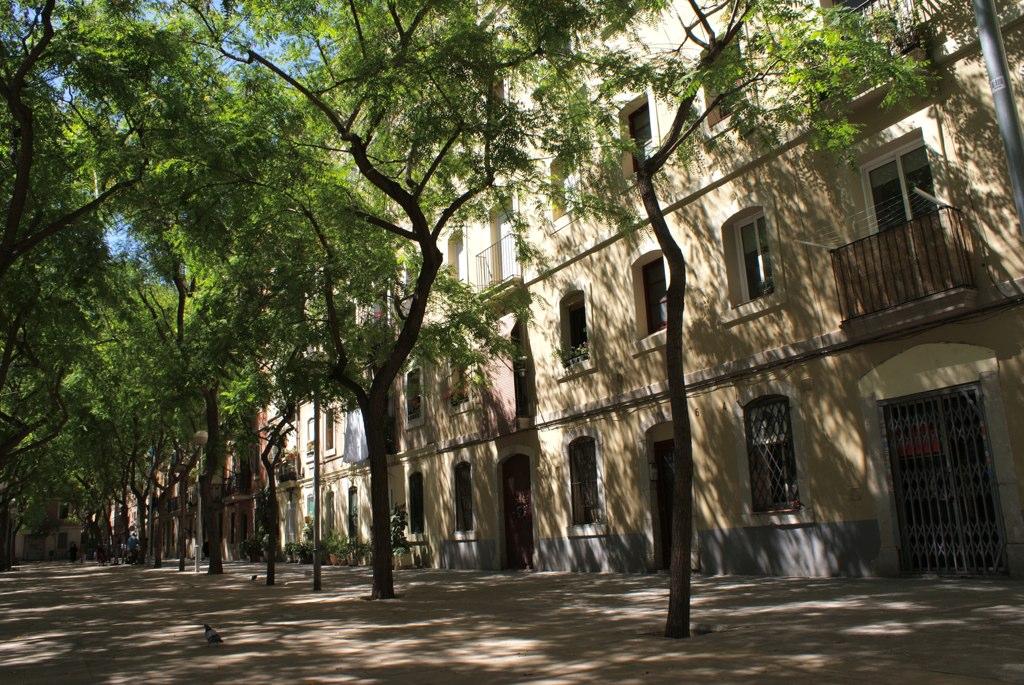 Place arborée et tranquille du quartier de Barceloneta près d'un terrain de foot.