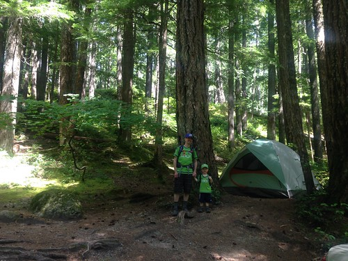 Ohanapecosh Campsite