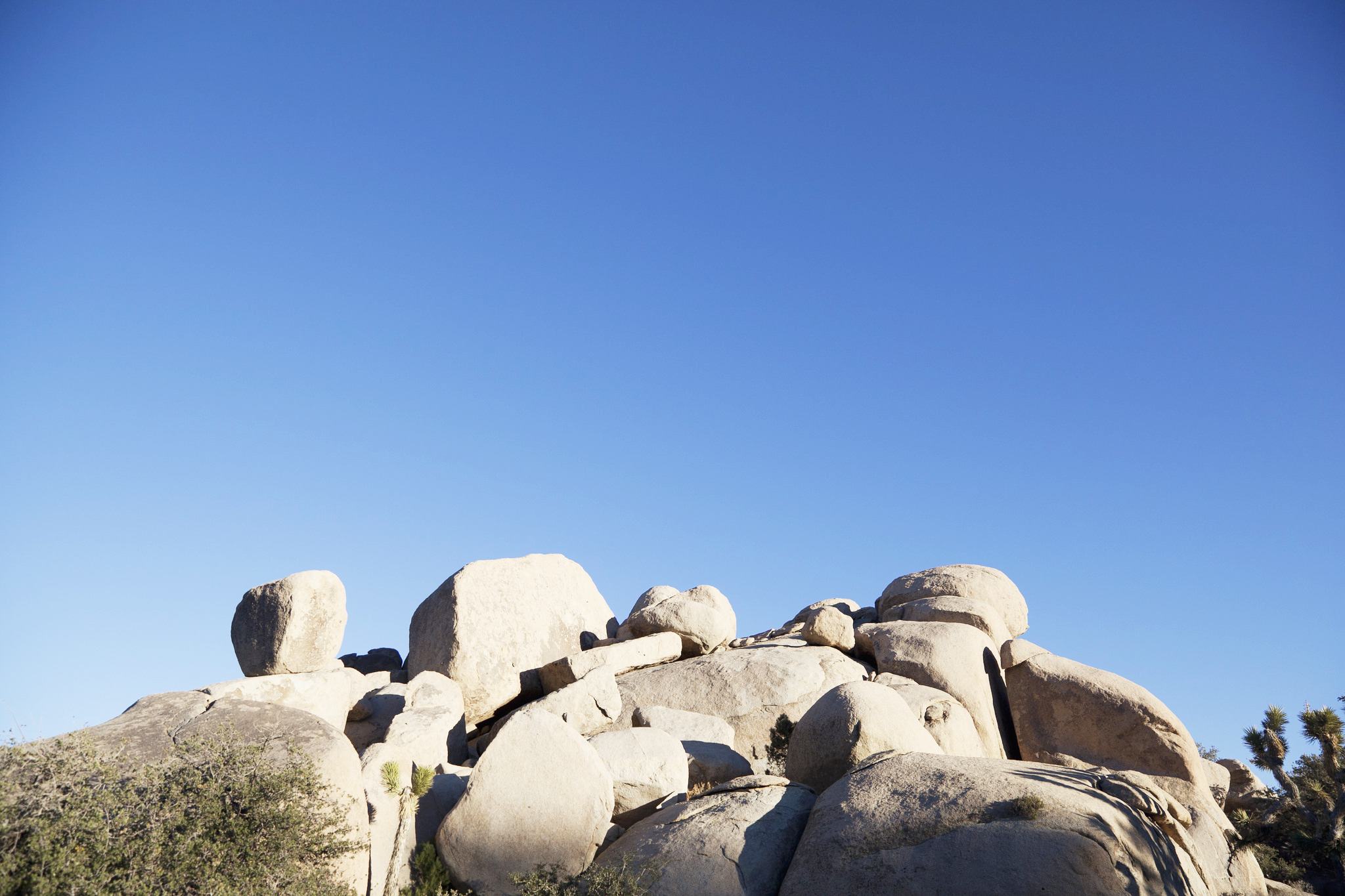 joshuatree_3_edit