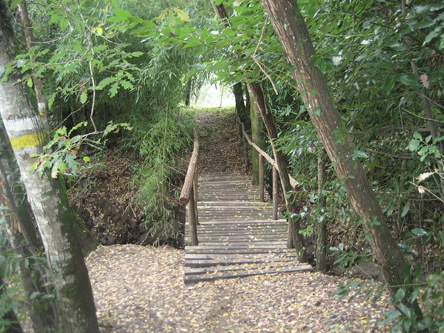 Puente en el PR-G 36 Sendeiro de San Xoán da Cova