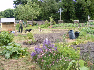 Allotment from NW