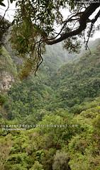 Vértigo (Santana, Madeira)