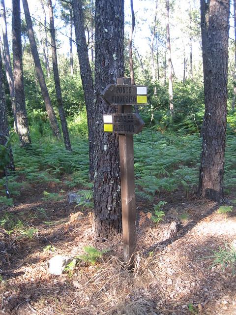 Señal Vertical en la ruta del Castro Lupario y río Sar