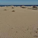 Dunas y playa del Carabassí