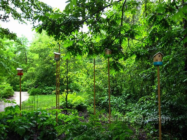 Van Dusen Garden-Touch Wood opening-13