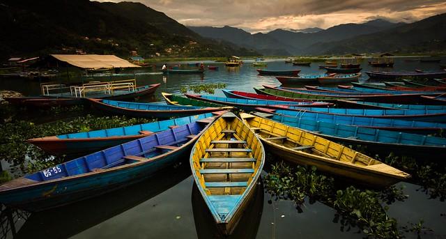 Boats in Pokhara