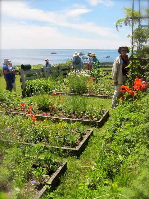 Celia Thaxter's Garden, Appledore Island