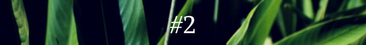 #1(1)