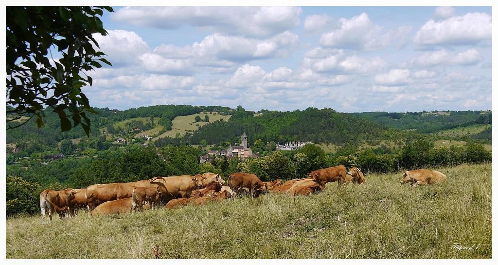 Mon village natal en Dordogne + correction 18839563620_463b2fbb1d_o