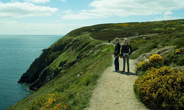 20150526-019_Howth Peninsula - on the coastal path