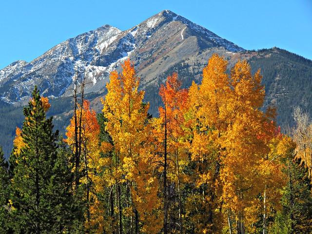 Rocky Mountain Autumn