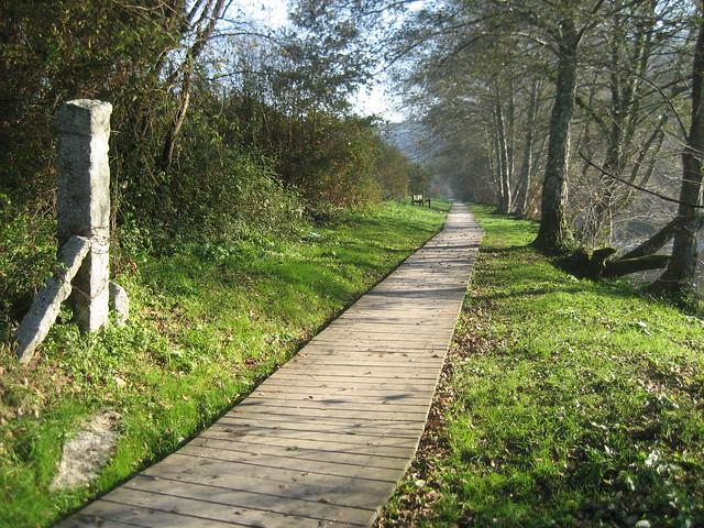 Paseo Fluvial en Caldas de Reis