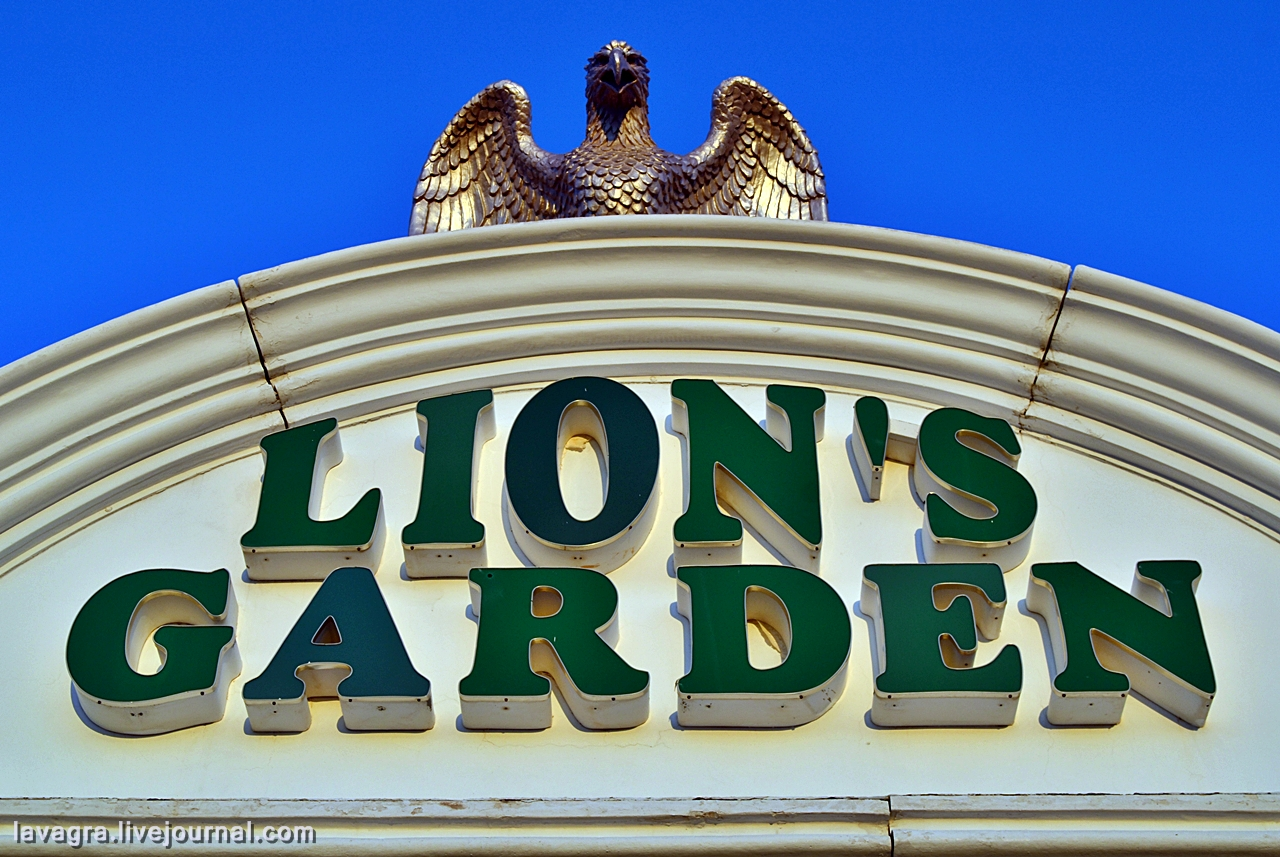 lions08