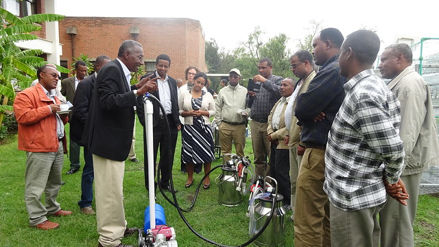Dr. Azage Tegegne (LIVES Project Manager) showcasing new milking technology introduced through LIVES