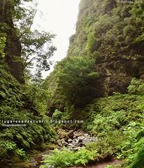 Desde el Caldeirão Verde (Santana, Madeira)