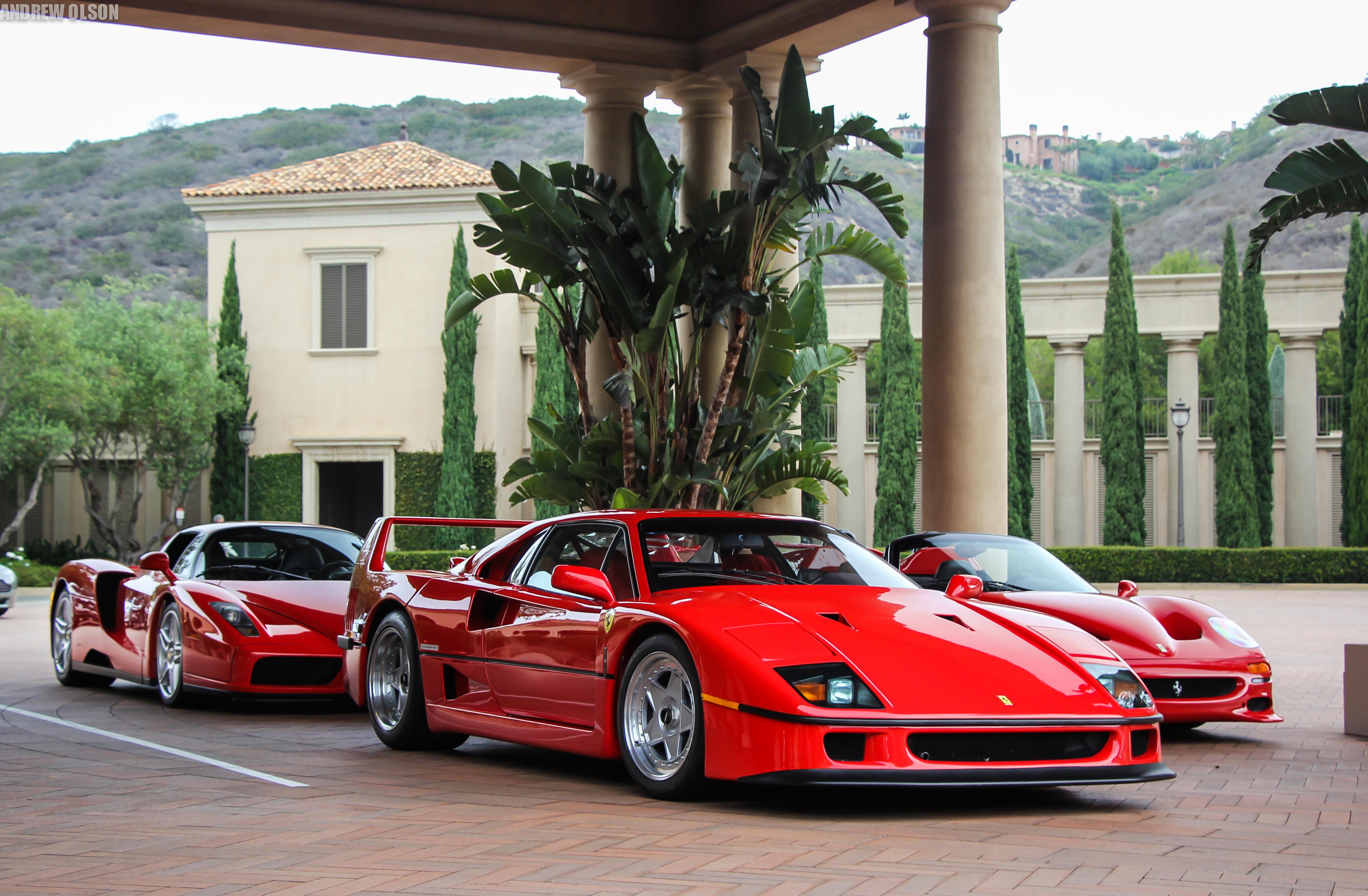 F40, F50, Enzo