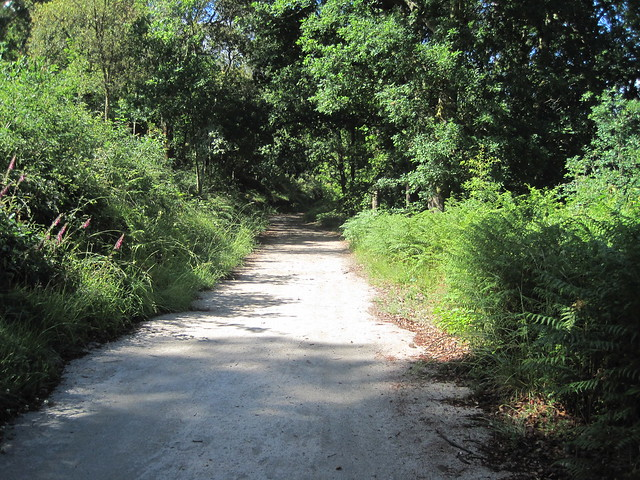 Sendeiro da Corga da Fecha en el Parque Baixa Limia-Serra do Xurés