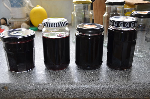 blackcurrant and gooseberry jelly June 15 2