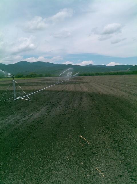 Logramos incrementar la superficie con tecnificación de riego: SEDARH