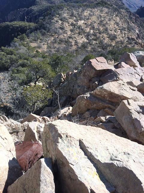98_Emory Peak Climb