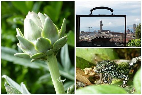 Toskana und Elba 2015 2015-06-076