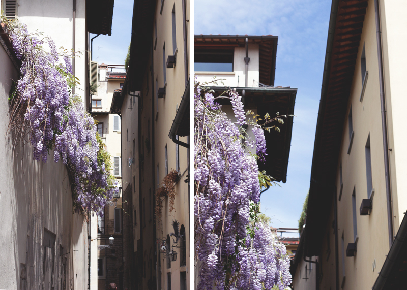 Wysteria in Florence, Bumpkin Betty