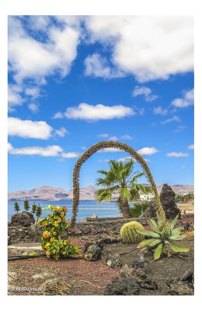 Puerto del Carmen # 2643b
