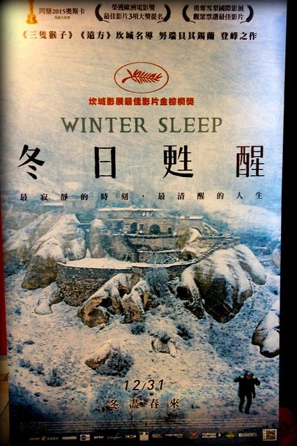 冬日甦醒 Winter Sleep台灣版海報