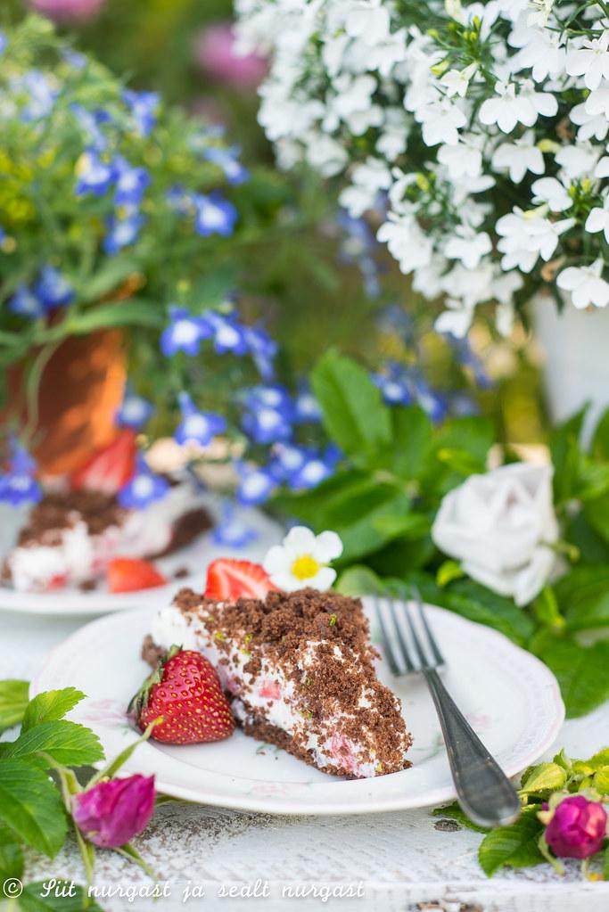 maasika-kakaokook