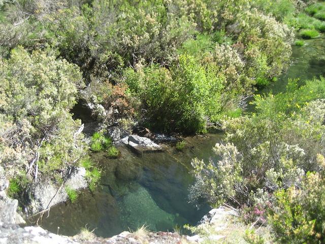 Poza río Cerveira en Pradoalvar