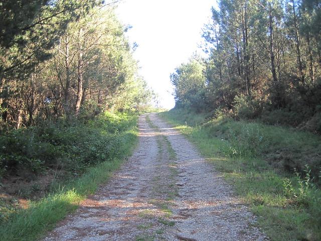 Pista en el Ruta Ponte Nafonso - Tambre
