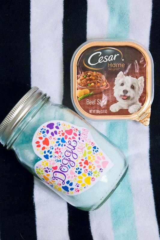 Doggie Salt Scrub-19