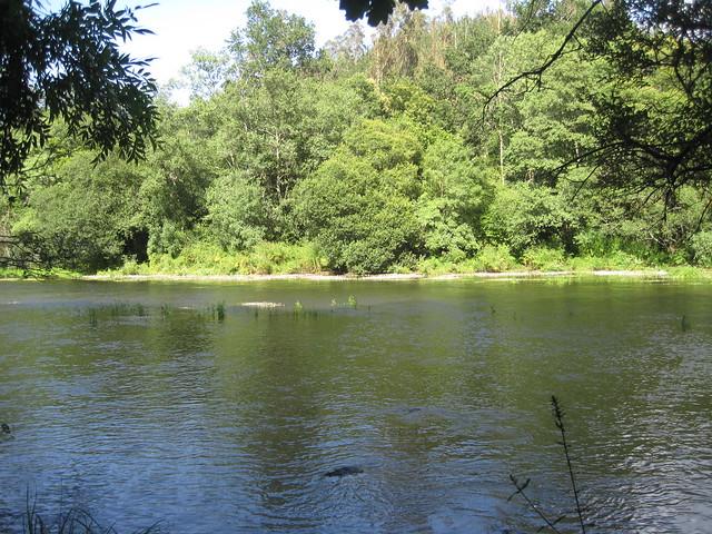 Río Ulla en el PR-G 121 Ruta dos Tres Ríos
