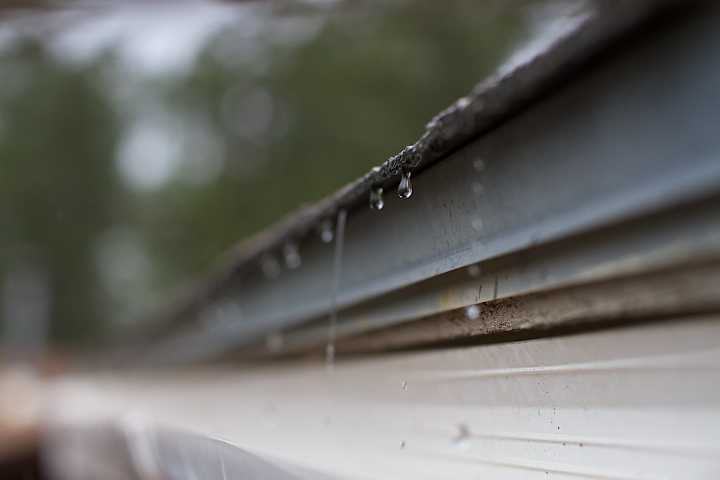 Roof Drips