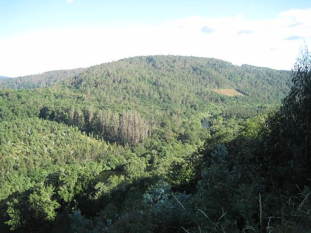 Río Ulla en el PR-G 93 Ruta da Ribeira do Ulla