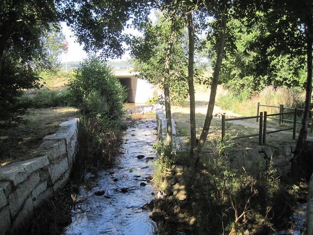 Río en el PR-G 171 Ruta do Río San Martiño