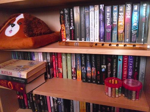 Below doggy bookrest shelf