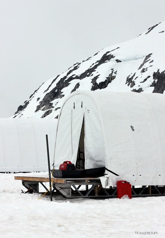 Hi Sugarplum | Trip Report: Juneau Icefield