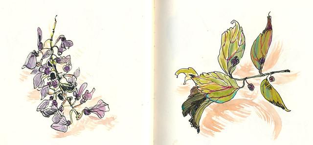 Sketchbook #89: Treasures