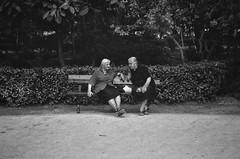 Park gossip