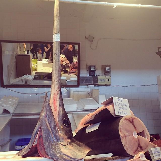 Sanlucar de Barrameda fish market