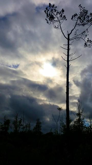 Summer solstice sky 2015