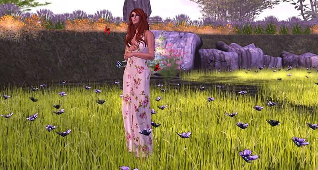 253 - In the flowering garden