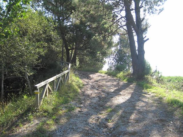Pista Forestal en el PR-G 107 Sendeiro de Pedra Miranda