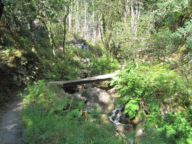 Puente en el PR-G 171 Ruta do Río San Martiño
