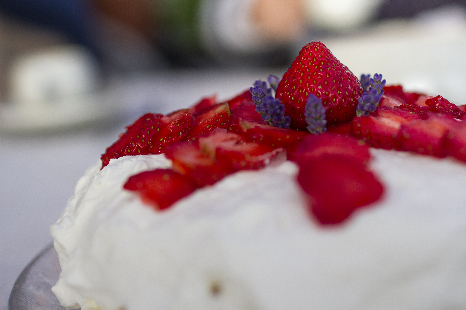 sommar hälsingland jordgubbstårta IMG_7758