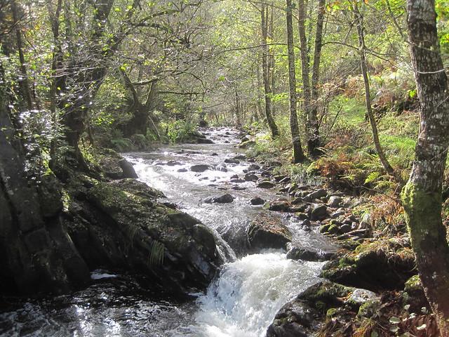 Río Eo en el PR-G 145 Ruta da Marronda - Alto Eo