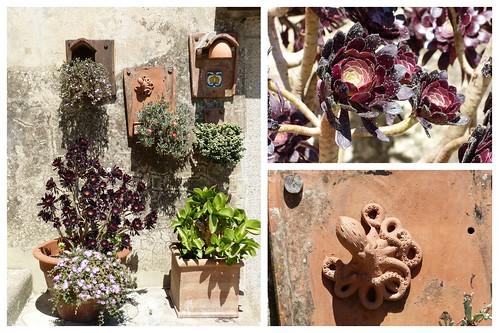 Toskana und Elba 2015 2015-06-0727