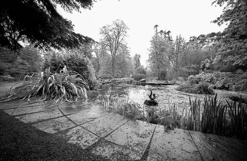 The Grounds of Armadale Castle, Scotland