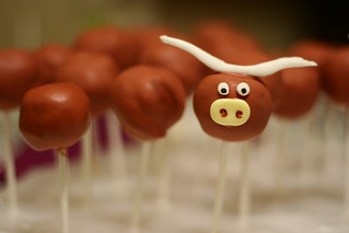 Longhorn Cake Pop | by kathyphantastic